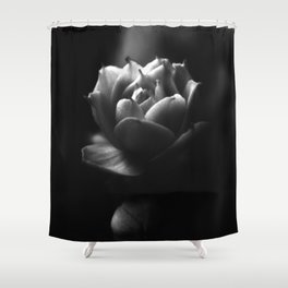 Black and White Kalanchoe  Bud Shower Curtain