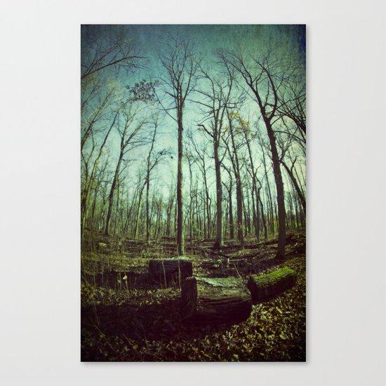 Where Giants Walk Canvas Print