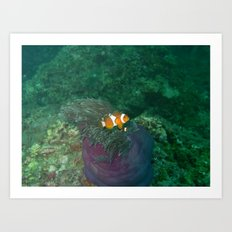 Nemo has been found Art Print