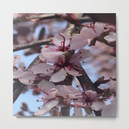 Bloomin' Blossoms #2 Metal Print
