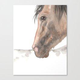Spanish Canvas Print
