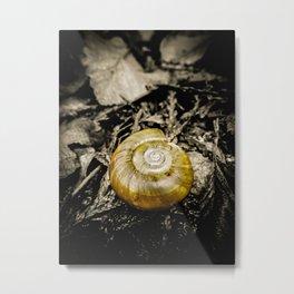Golden Spiral Metal Print