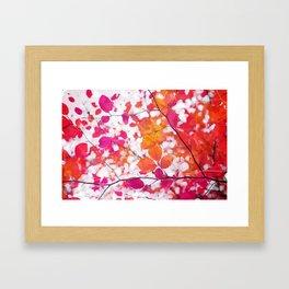 Pink Autumn Framed Art Print