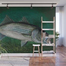 Striped Bass Fishing Art Prints Wall Mural