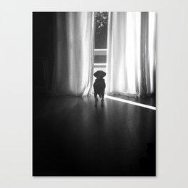 Peeking Out - Noir Canvas Print