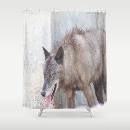 Gray Wolf 9 Shower Curtain