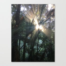 Waimangu Volcanic Valley, Rotorua, New Zealand Canvas Print