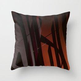 52419 Throw Pillow