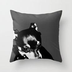 I hate the paparazzi Throw Pillow