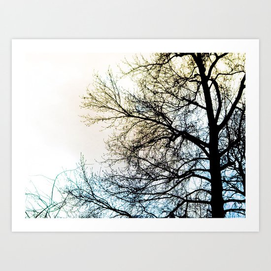 Ombre chinoise Art Print