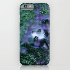 Just another kitty among the flowers Slim Case iPhone 6s