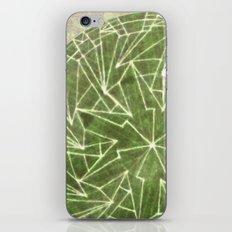 Spinny 1 iPhone & iPod Skin