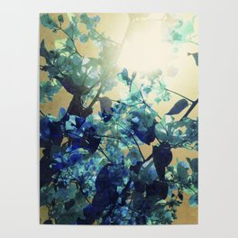 Sunny Blue Poster
