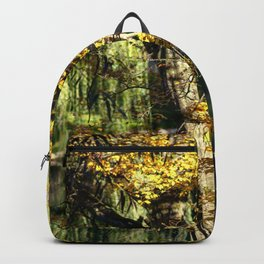 Autumnal reflection Backpack