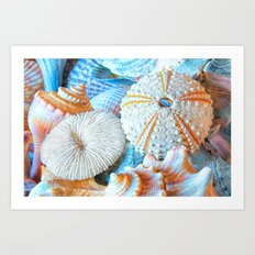 Aquatic Lines Art Print