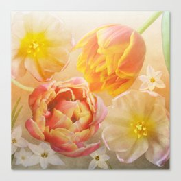 Tulips in pink, orange and yellow Canvas Print