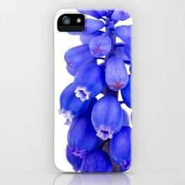 Grape Hyacinth (Muscari armeniacum) - modern minimalist flower photo iPhone Case