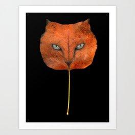 Autumn Cat-4 Art Print