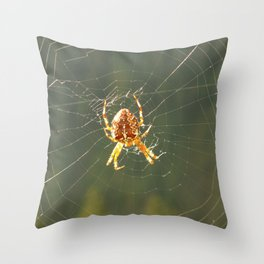 Spinning Her Web Throw Pillow