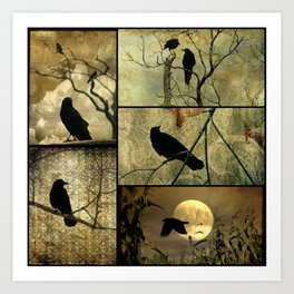 Aged Crow Collage Art Print
