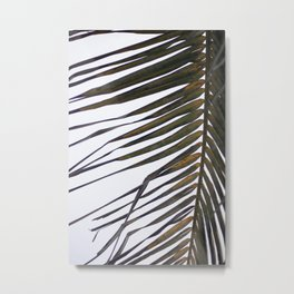 Long Palm Metal Print