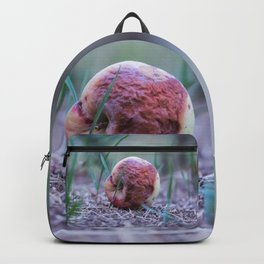 The wicked queen bad apple Backpack