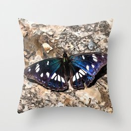 Southern White Admiral On Stone Butterfly Portrait Throw Pillow