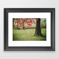 Red October Framed Art Print