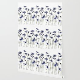 Blue Cornflowers, Illustration Wallpaper