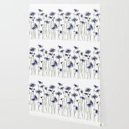 Blue Cornflowers, Illustration Wallpaper