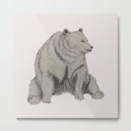 Chummy Bear Metal Print