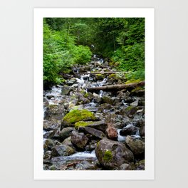 Mountainside Stream Art Print