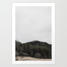 Tiny Home 1 Art Print