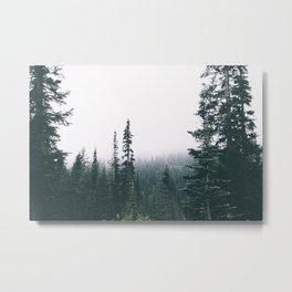 Forest XXIV Metal Print