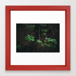 Little leaves Framed Art Print