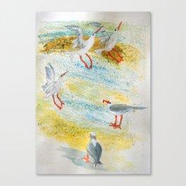 Pick Me Canvas Print