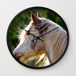 Frost the Painted Pony ( horse ) Wall Clock