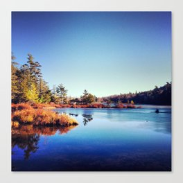 Catskill Forest Preserve I Canvas Print