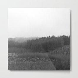 Scottish Woodlands Metal Print