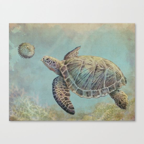 A Curious Friend (sea turtle variation) Canvas Print