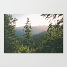 Forest XV Canvas Print