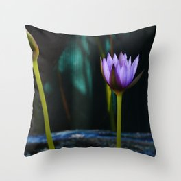 Nymphaea 'Rhonda Kay' Throw Pillow