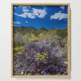 Painted Desert 7690 - Joshua_Tree_National_Park Serving Tray