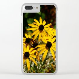 Backed Eyed Susan In Autumn Clear iPhone Case