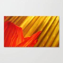 Sun Rays & Blossoms Canvas Print