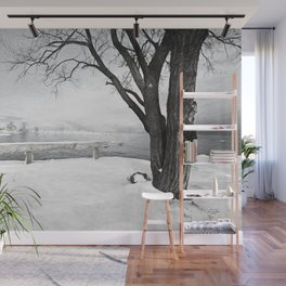 Winter Shore Wall Mural