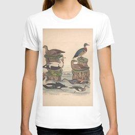 King Eider Common Eider Common Cadwall Summer Wood duck American Wigeon9 T-shirt