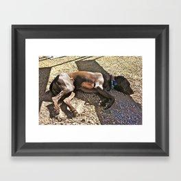 Sleepy Alaska Framed Art Print