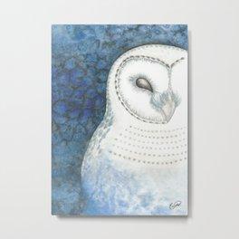 Value Owl Metal Print