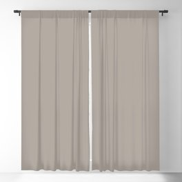 Fossil Gray Solid Color Pairs with Sherwin Williams Haven 2020 Forecast Color Functional Gray SW7024 Blackout Curtain